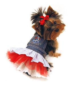dogs, dress-up,clothng