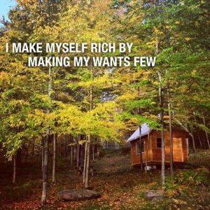 rich wants wealth treasure