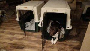 Cora wants the bigger room
