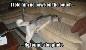 problem loop hole